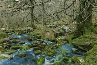 Nacimiento del río Asón. Foto Teo Moreno
