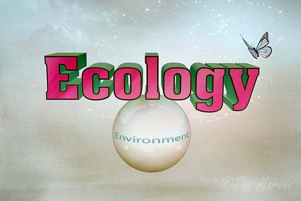 Educación Ambiental ecology u environment. Ecologia y Medio Ambiente.