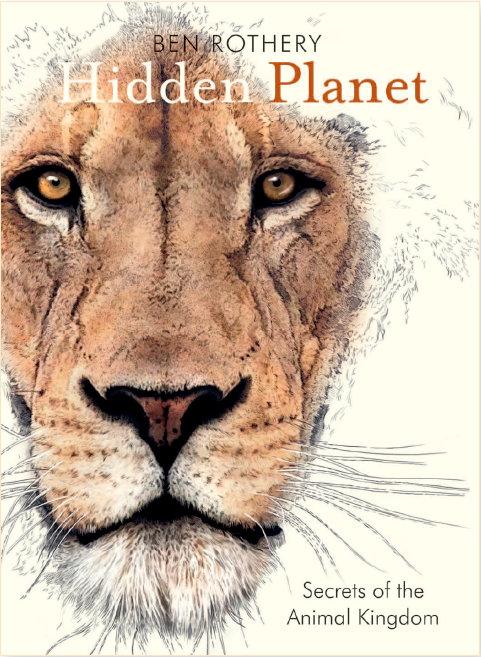 Hidden Planet