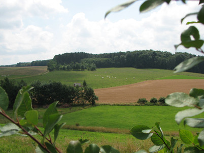 Uitzicht Huldenberg 2.JPG