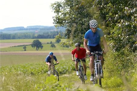 mountainbike PSO.jpg