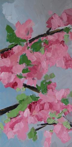 Cherry Blossum 2