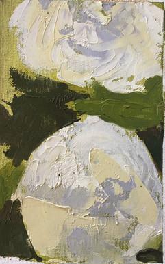 Hydrangea 3