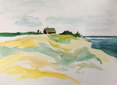 Wellfleet Bay