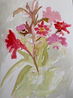 Mid pandemic flowers 3