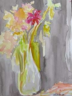 Mid pandemic flowers 2