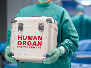 Foreign patients in Turkey on rise with organ transplant network