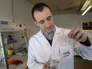New DNA profiling kit developed by Turkish scientist claims results in just 34 minutes