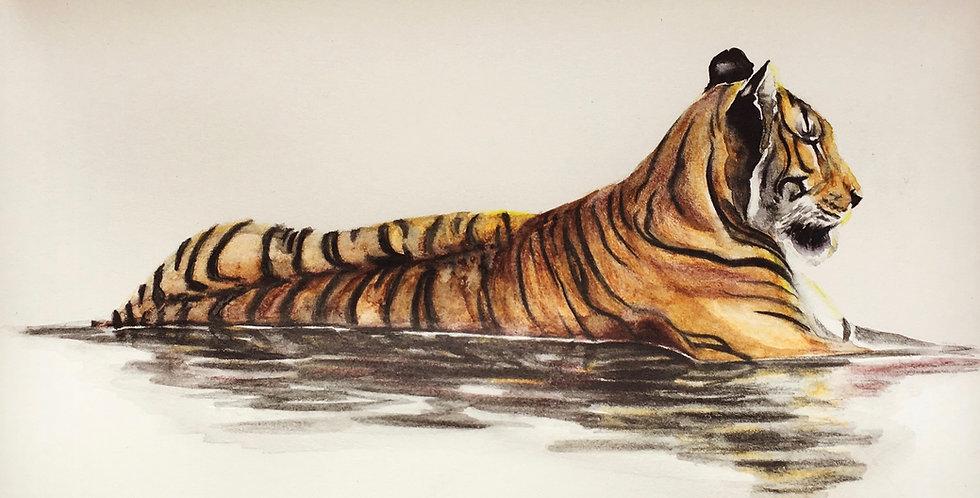 River Tiger