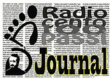 logo new radio rettangolare journal fond
