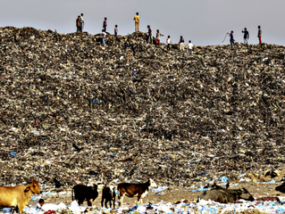 Fast Fashion and the Deadly Impact on Planet Earth.