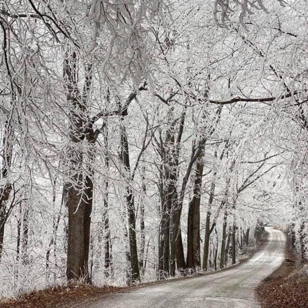 Valentine ice storm, 14Feb21
