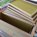 a hive box with frames