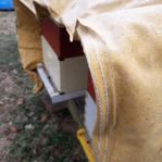 tarping to block wind and ice