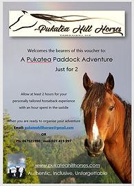 gift voucher horse riding