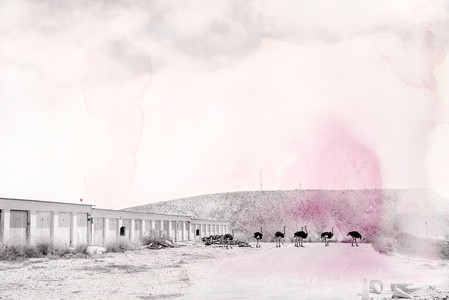 """Koingnaas mine dump with rose tint"" (2 available)"