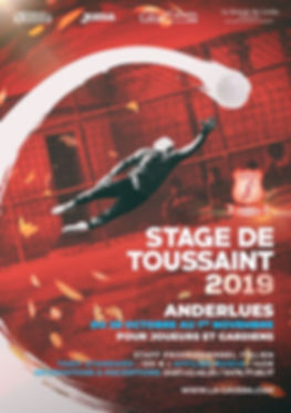Stage toussaint 2019 - Anderlues.jpg