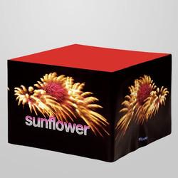Sunflower Topf