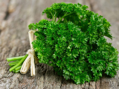 Why Parsley Should be More Than a Garnish
