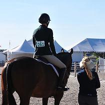 Hunter Jumper Barn Horse Training