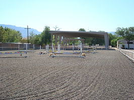 Hunter Jumper Barn Horse Training