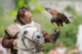 GRCF Les Animaux des R, Guillaume Roche, Ses compagnons, Oiseaux, Chevaux, Rapaces, Oiseaux de proie, Animaux