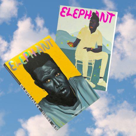 Elephant Magazine 45