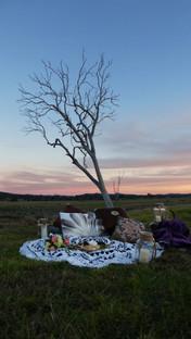 Flinders Peak Winery picnic