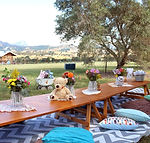 picnicparlour_picnic2_#5.jpg