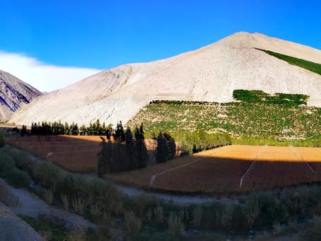 Siete razones para ir a la Ecoexpedición Ruta Antakari y Valle del Elqui