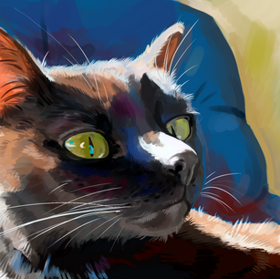 Painting study of cat, 2021