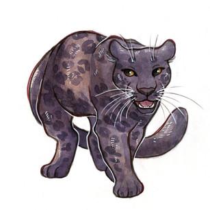 Black panther design for client, 2018.