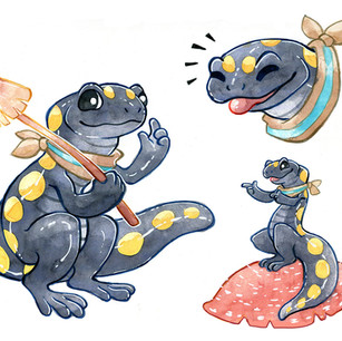 Character design for client of spotted salamander. 2018