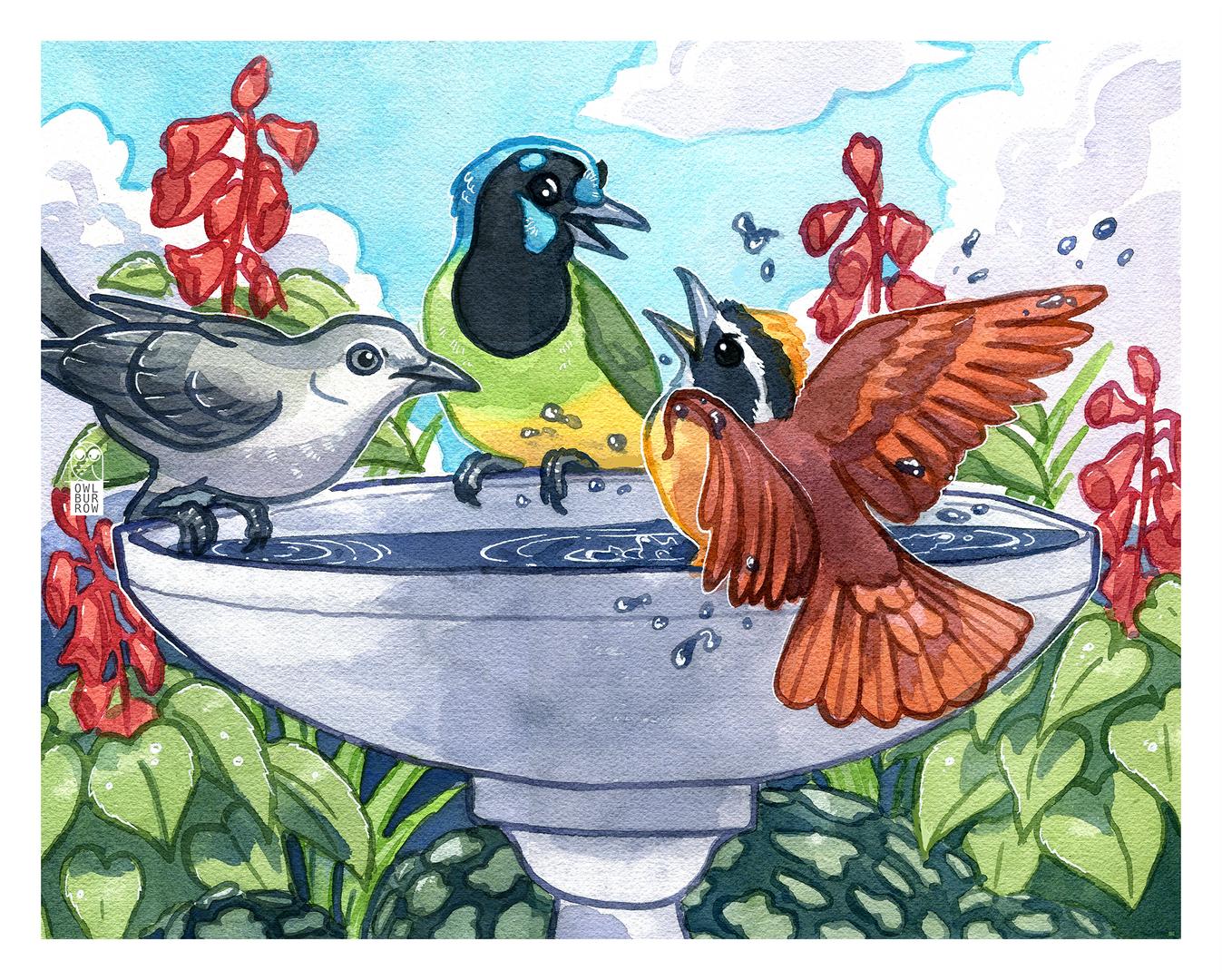 Birdbath drama. Watercolor, 2021.