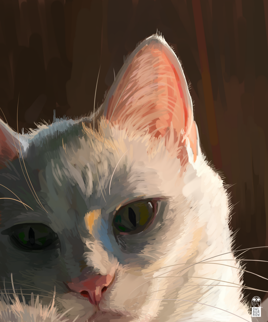 Painting study of cat, 2020.