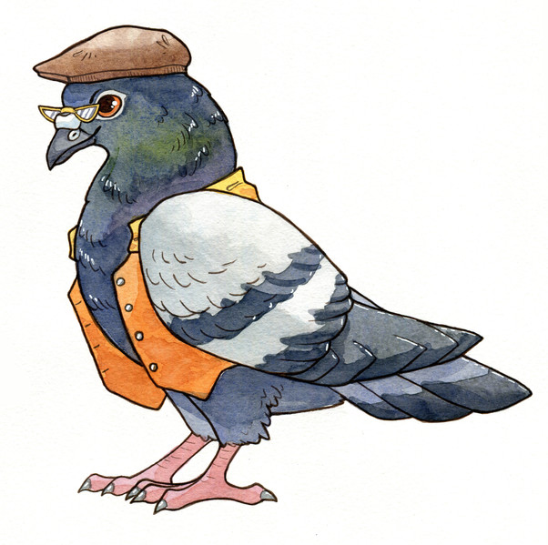 Character design for Taxicat of a pigeon