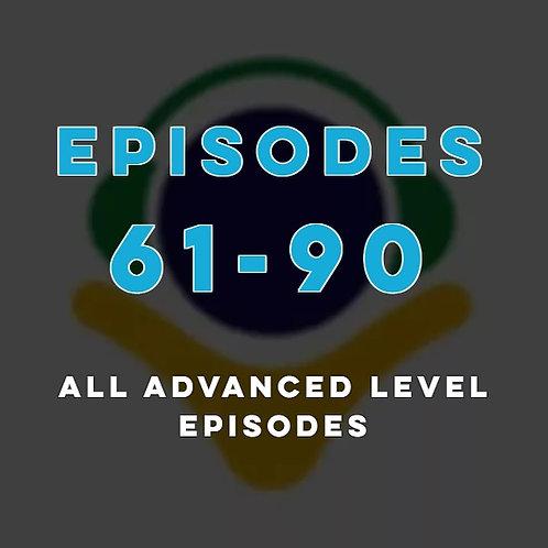 PP_61-90_advanced
