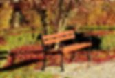bench-3820131_960_720.jpg