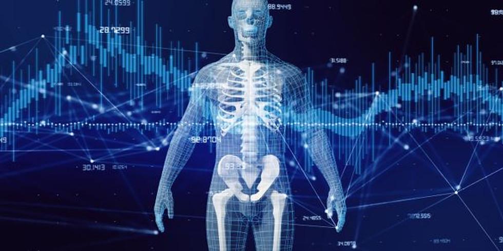 Anatomy for Healers