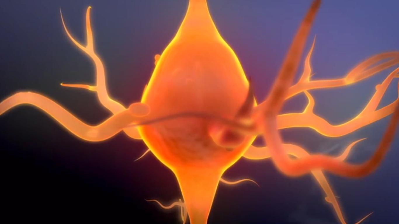 Head Games | Neuron Sequence