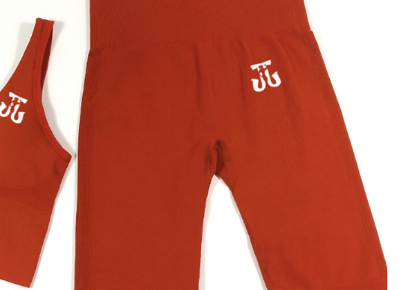 Sleek Shorts