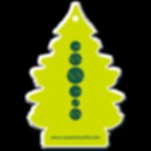 tree-aloe.png