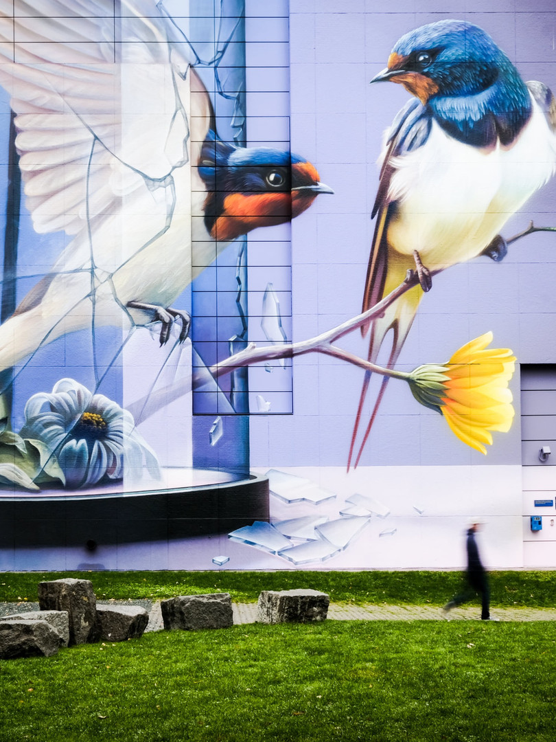 Big bird mural