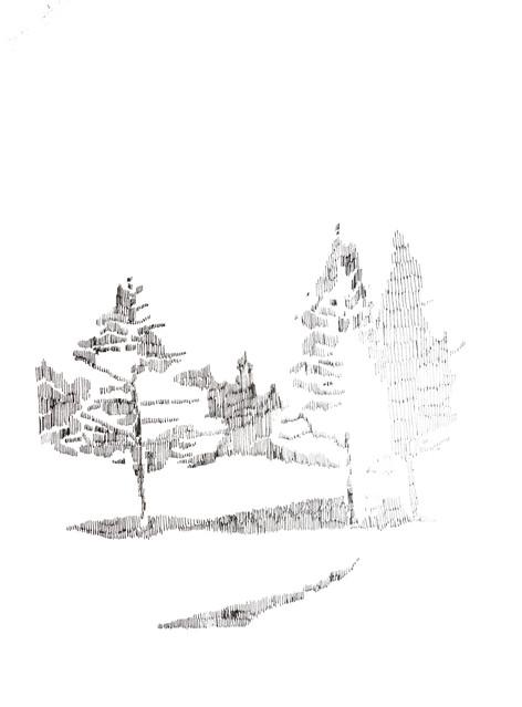 Flagstaff 2018