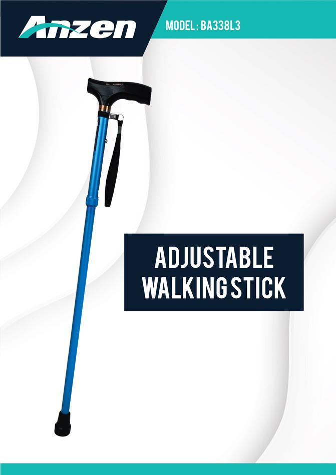 walking stick-02.jpg