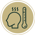 Lyco icon 3.png