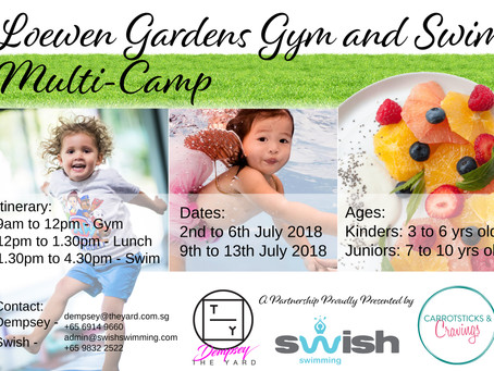 Announcing New Holiday Multi-Camp!