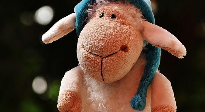 sheep-1592607_960_720.jpg