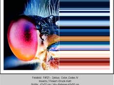 ART.STUDIO-ONLINE-GALERIE-1.Q-F#121.jpg