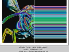 ART.STUDIO-ONLINE-GALERIE-1.Q-#124.jpg